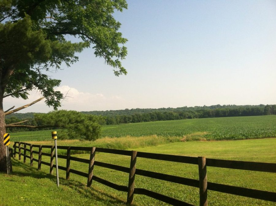 Rochester country